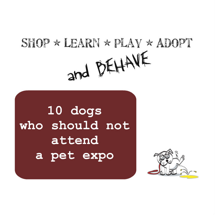 10 dogs who should not attend a pet expo. slogan source: Phoenix Pet Expo