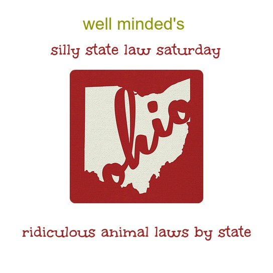silly state law saturday: ohio. state image source: etsy.com
