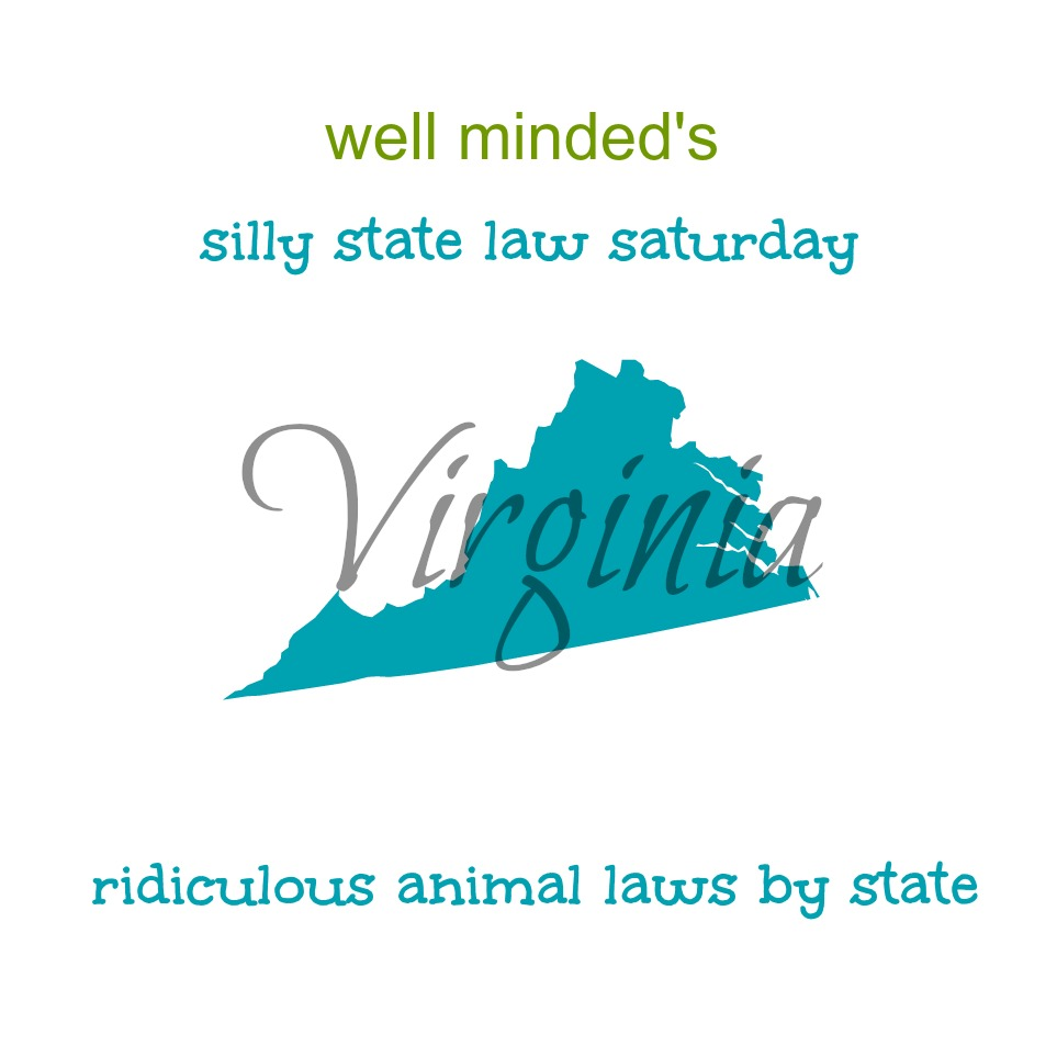 well minded's silly state law saturday: virginia