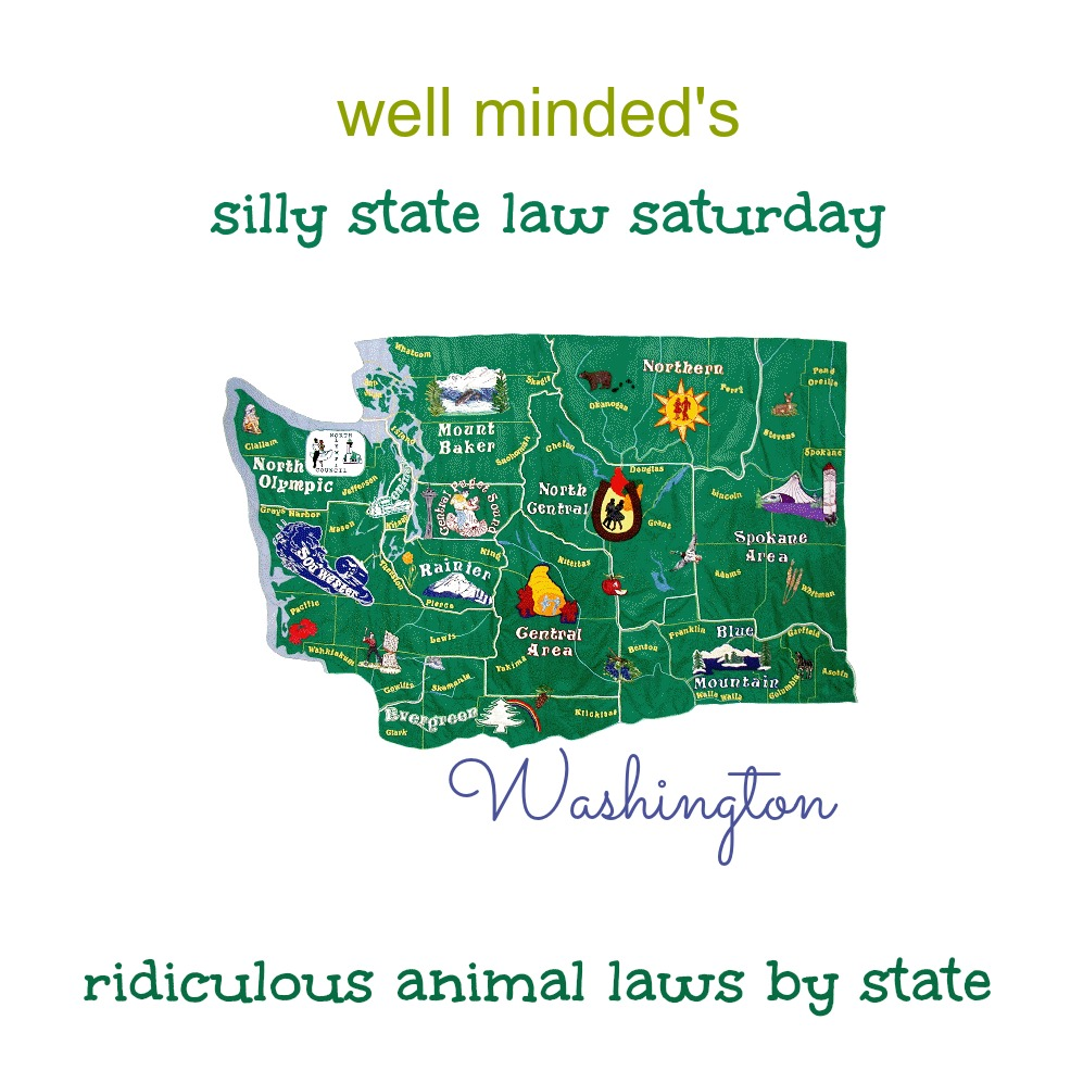 well minded's silly state law saturday: washington. State image source: square-dance_wa.org