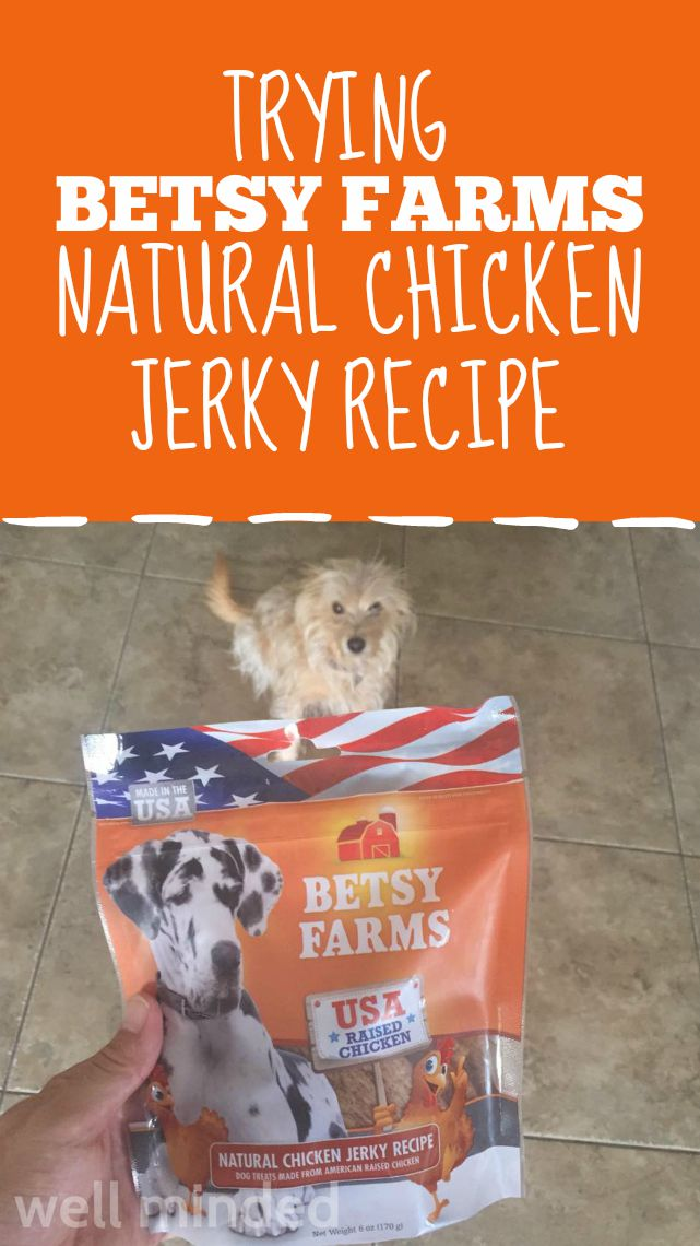 Trying Betsy Farms Natural Chicken Jerky Recipe.