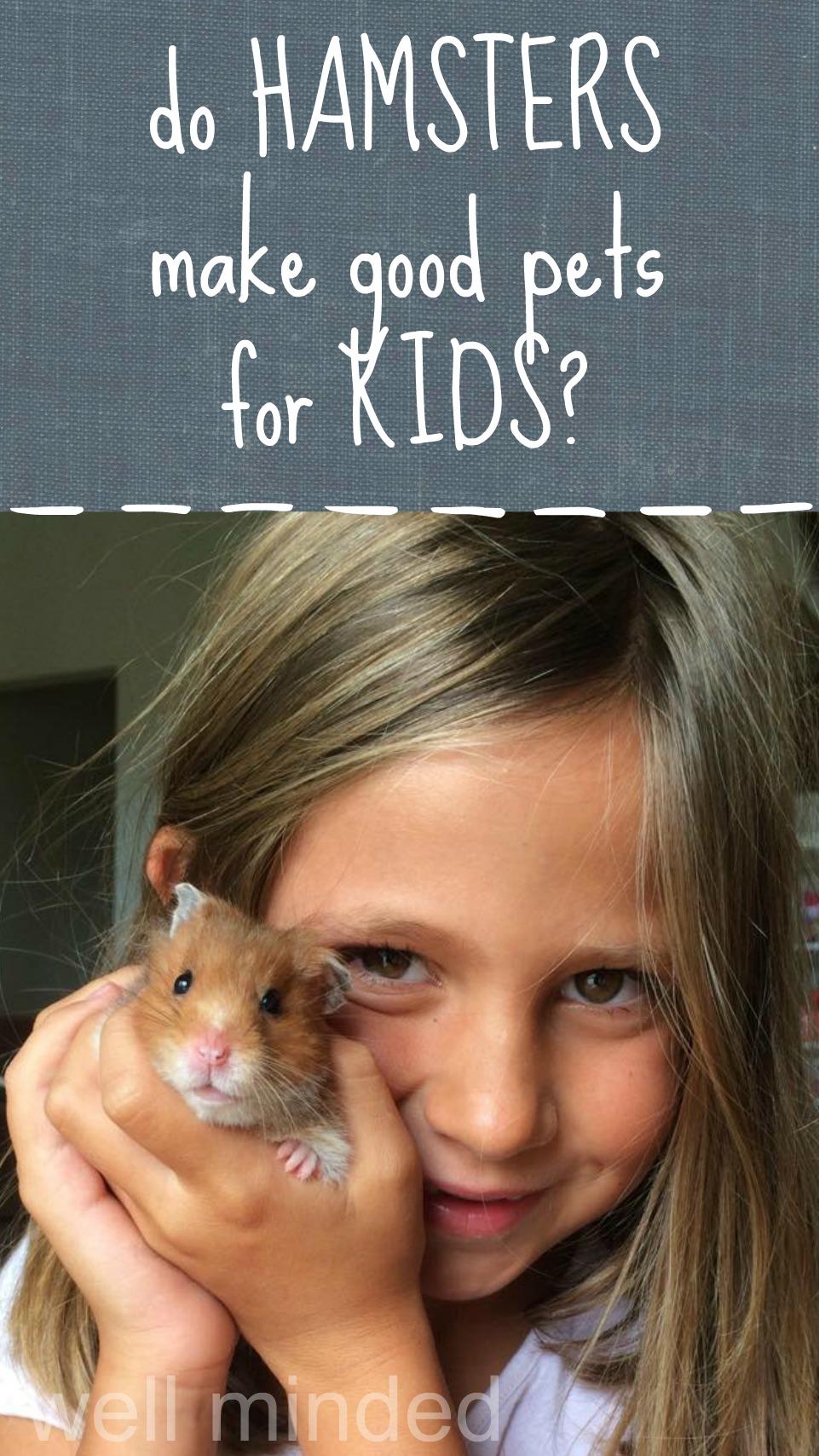 Do hamsters make good pets for kids?