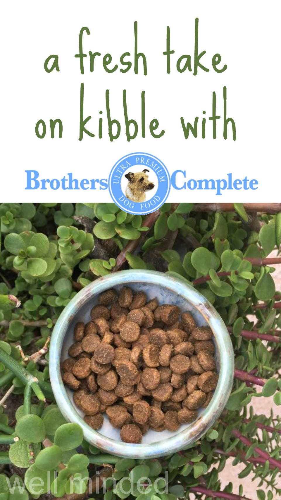 Brothers Complete offers a fresh take on kibble. wellmindedpets.com