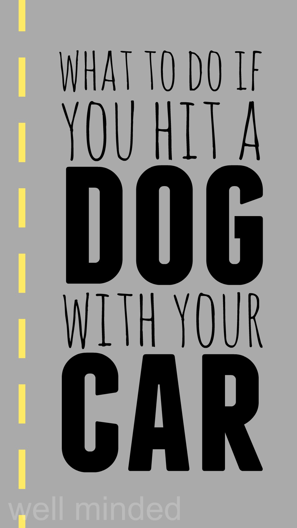 What to do if You Hit a Dog with Your Car–wellmindedpets.com