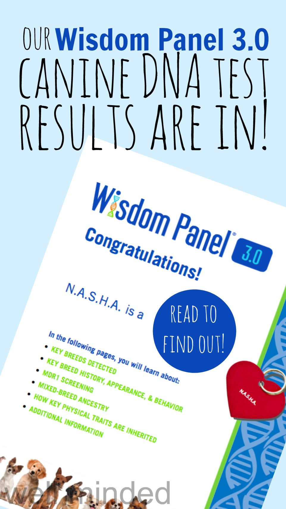 Our Wisdom Panel® Canine DNA Test results are in...with surprising results! wellmindedpets.com