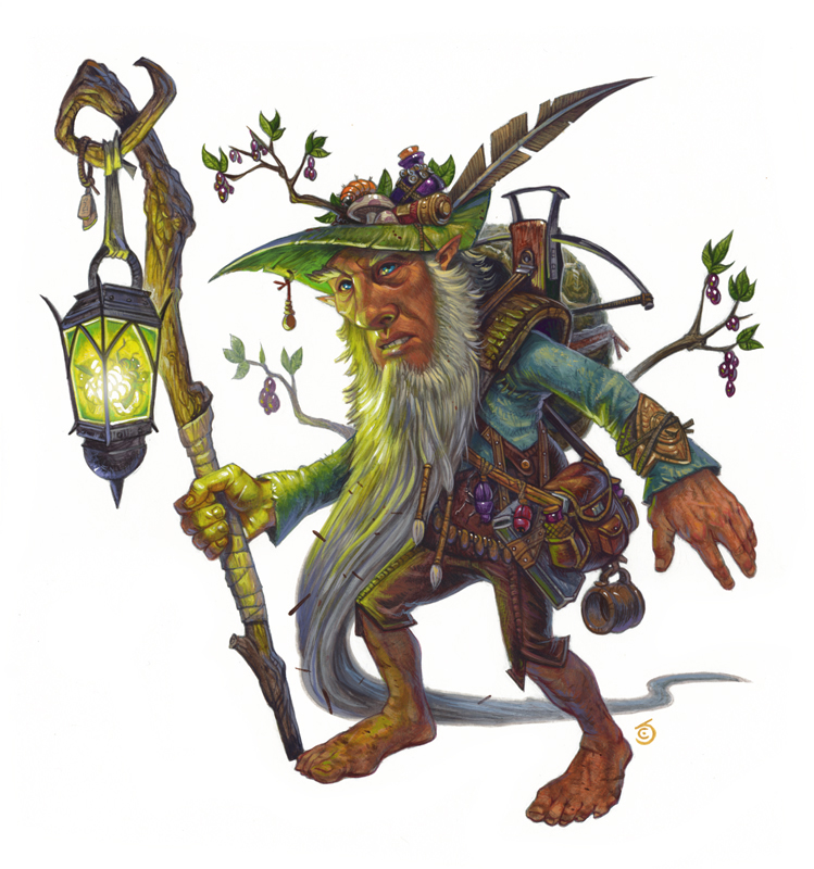 Forest Gnome