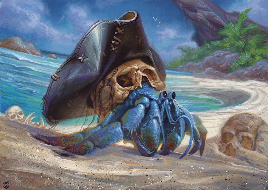 Shorecomber Crab