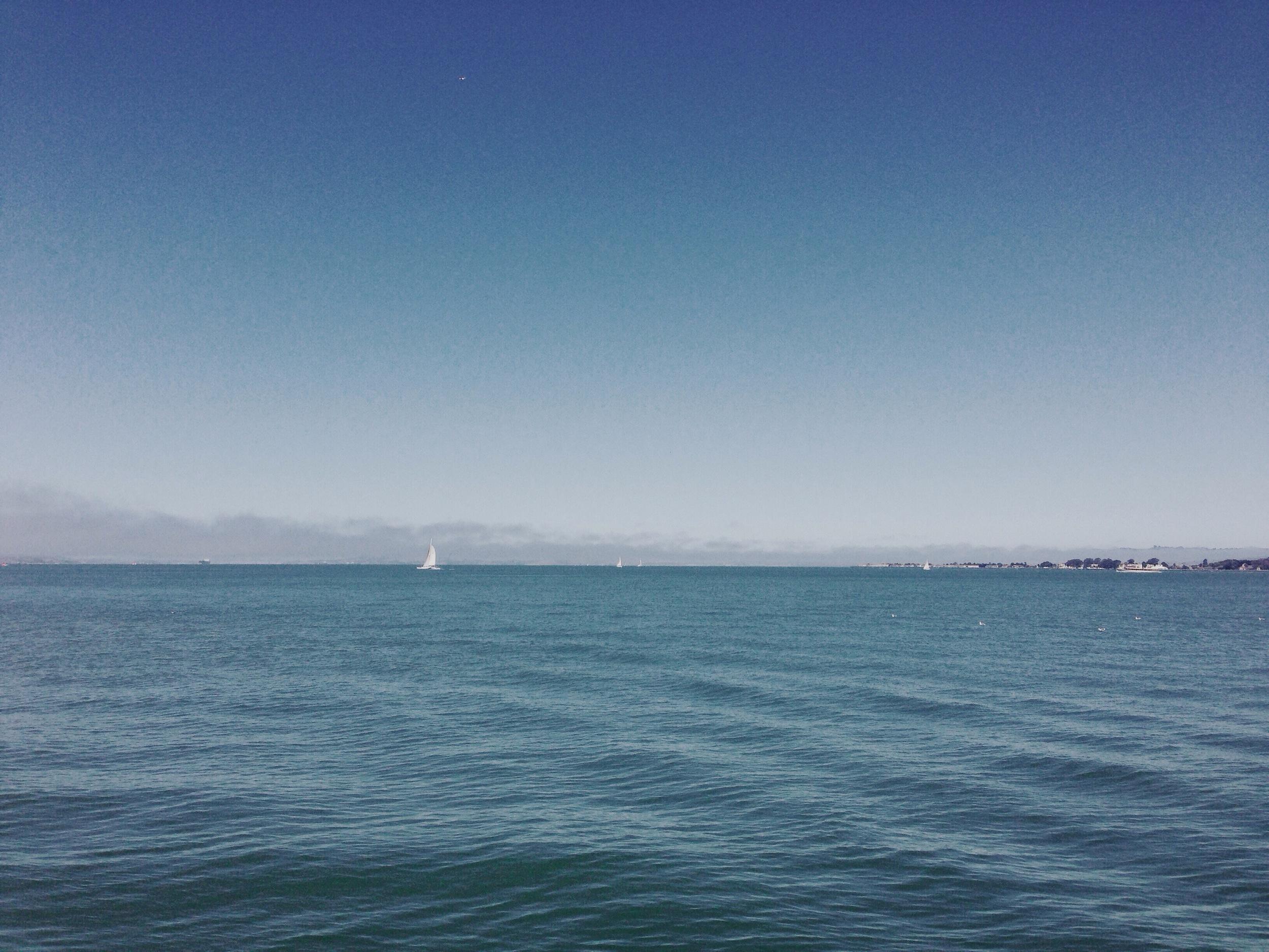 sail8.jpg