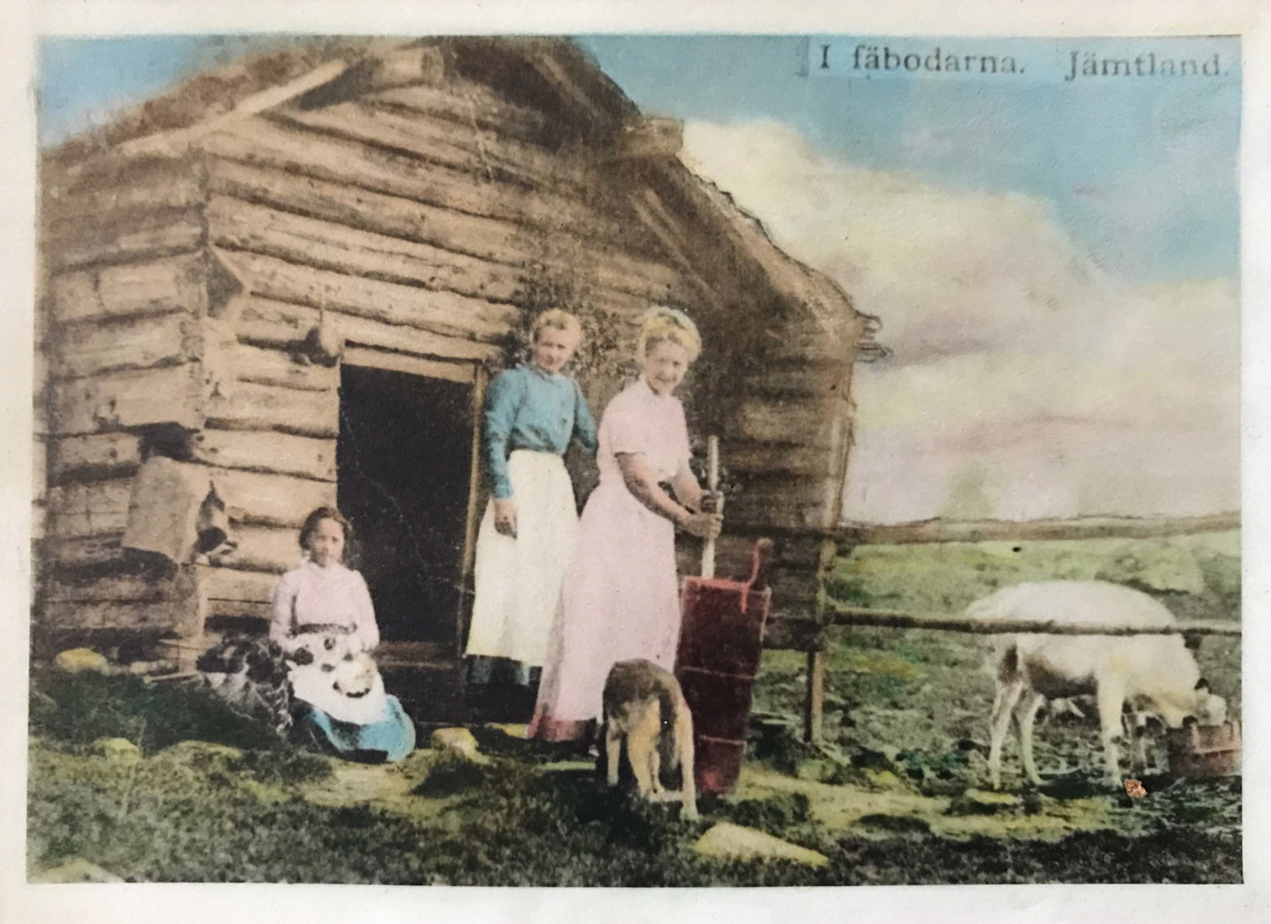 Kristine's great-grandmother Marie Bodin (left) sitting with her sisters in the Fäbodarna on Oviksfjällen in Jämtland Sweden.