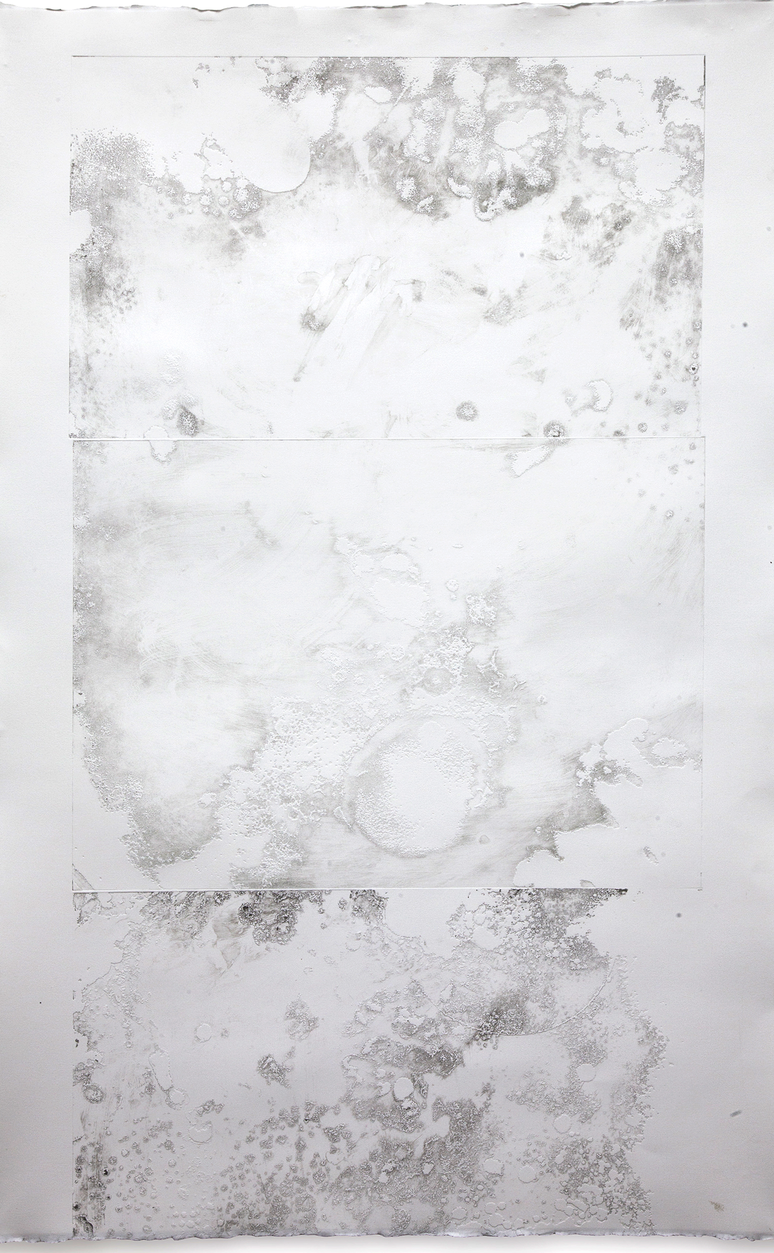 """Microcosm III  Intaglio embossing on arches  33 X 50"""""""