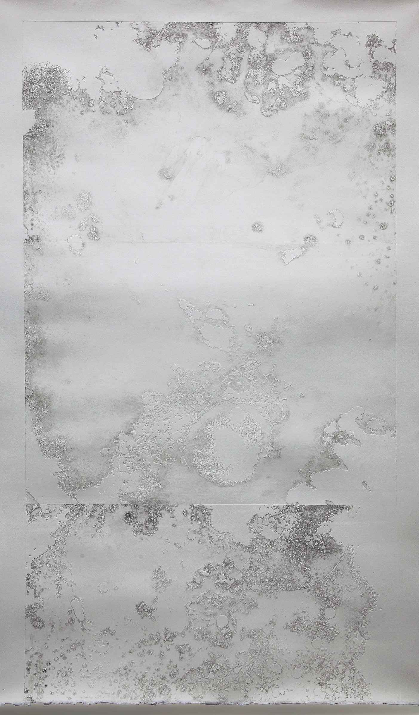 """Microcosm II  Intaglio embossing on arches  33 X 50"""""""