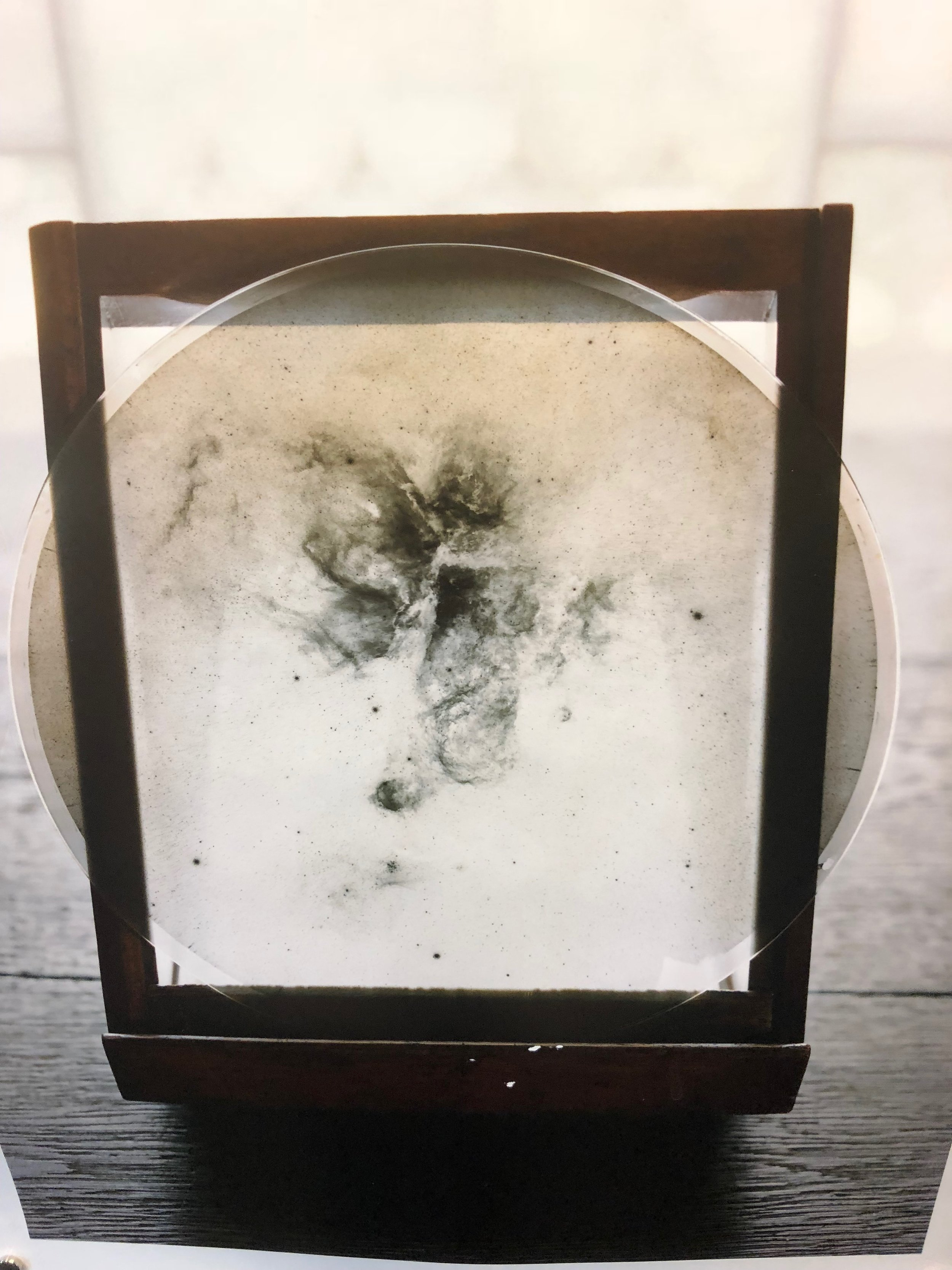 Archival glass plate negative of solar galaxies at the Harvard Smithsonian Centre for Astrophysics