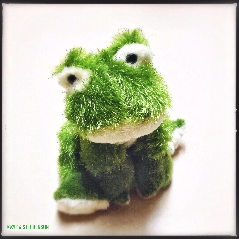 Fuzzy Frog.JPG