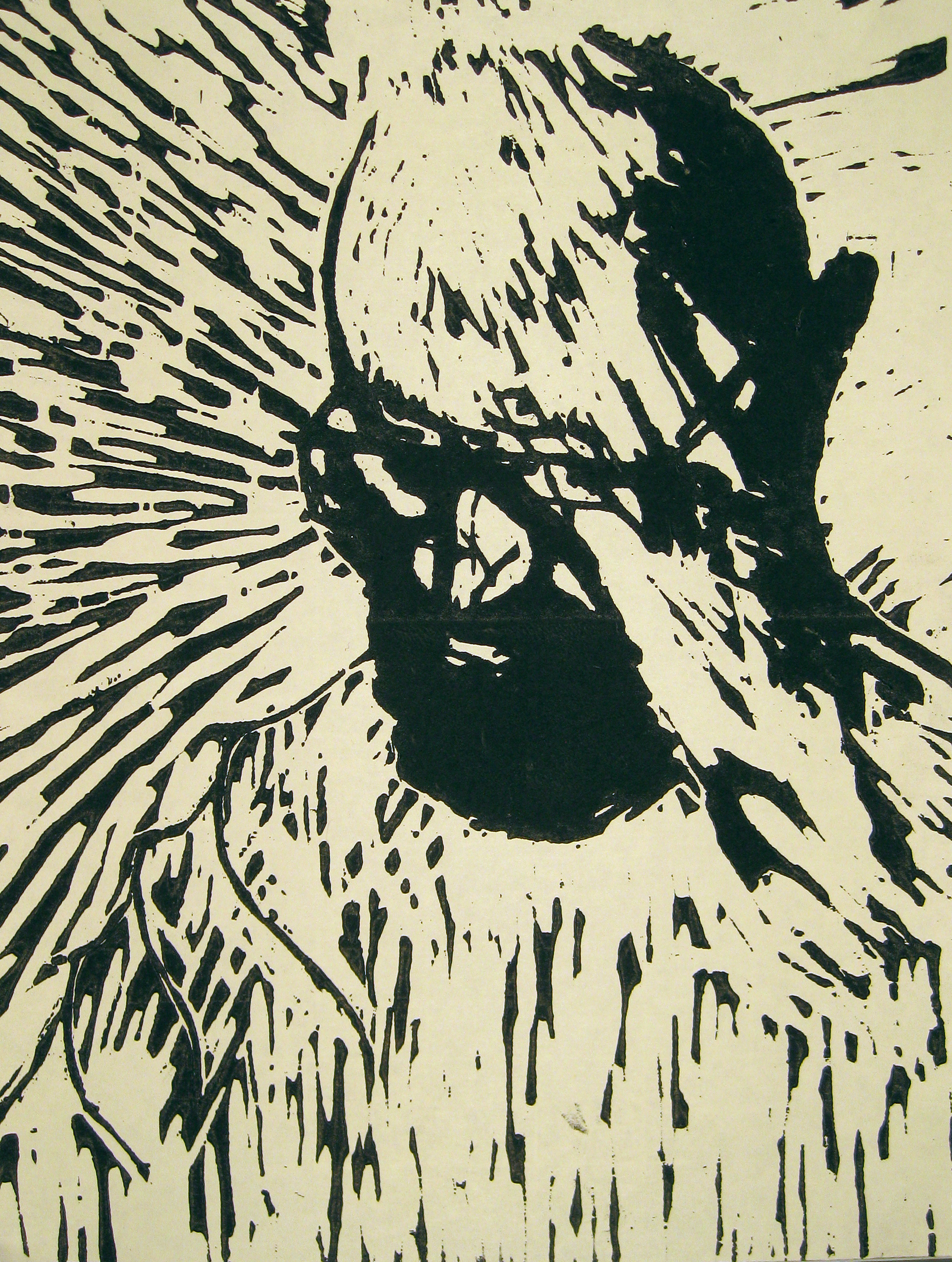 Relief Print, BHS
