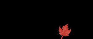 mb-travel-logo-e1409535502189.png