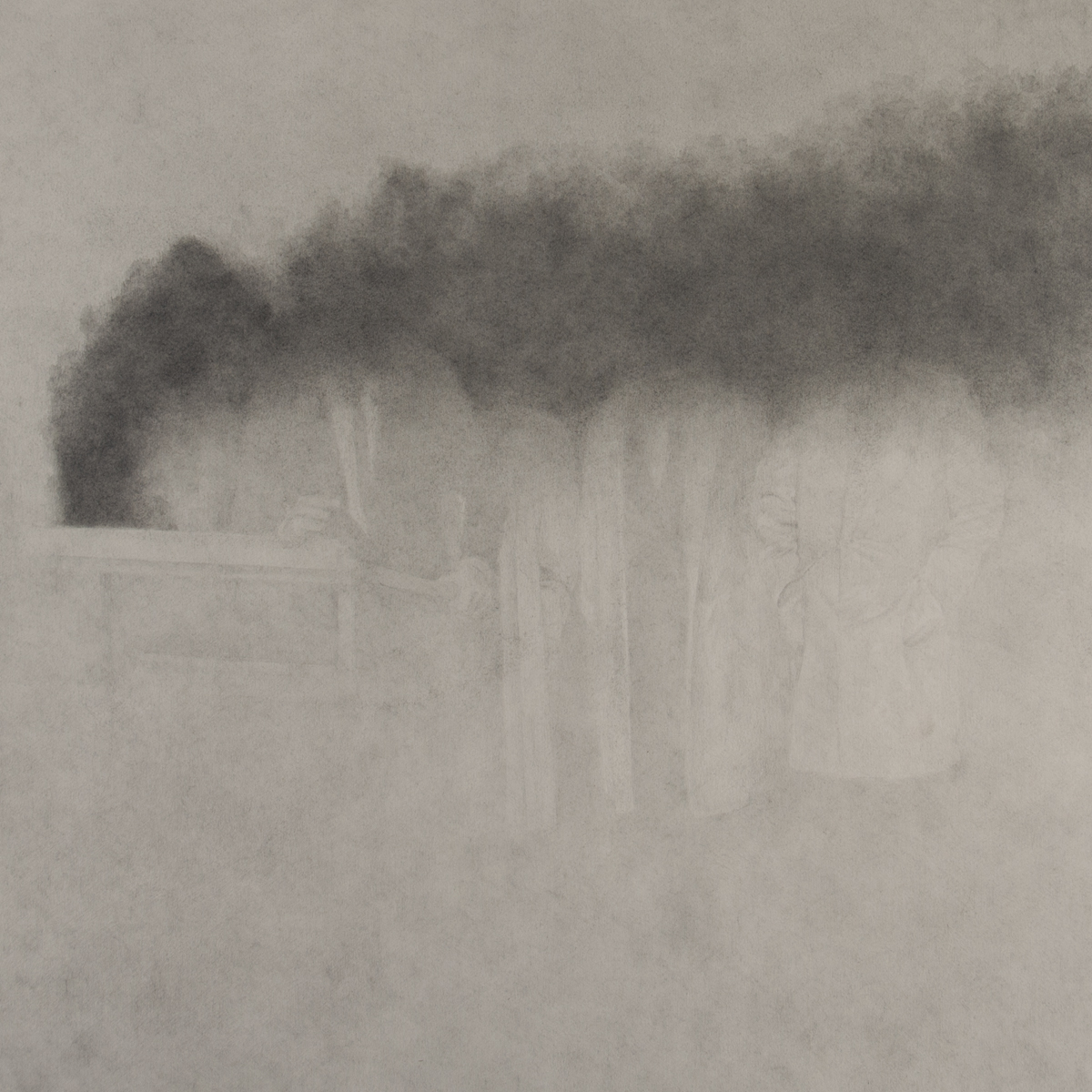 "Veiled   Graphite on Paper  21"" x 21""  2014"