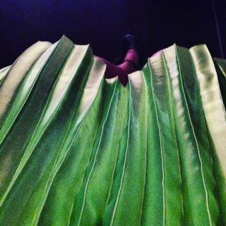 Dame skirt.JPG