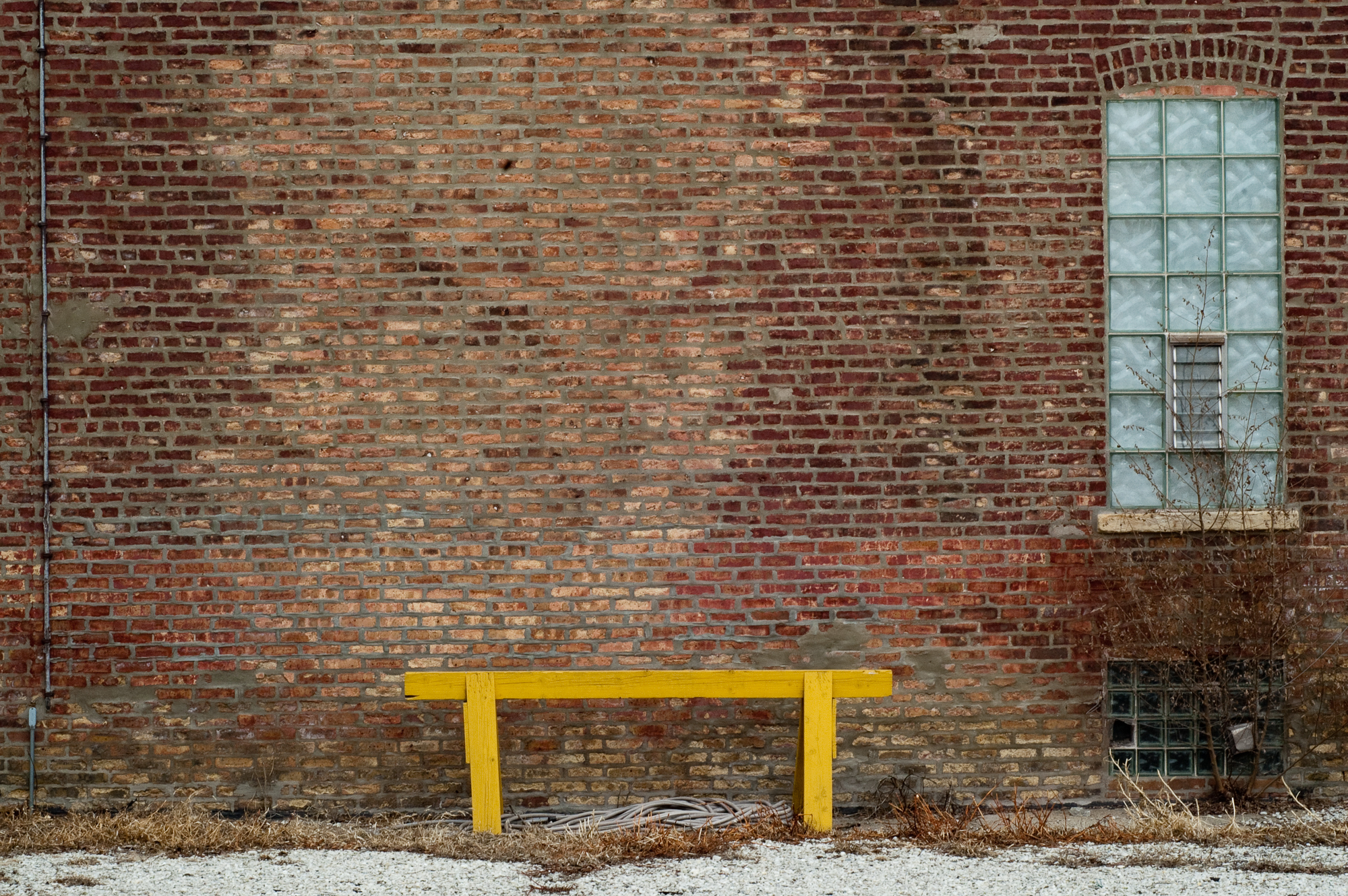 Yellow Bench Bucktown