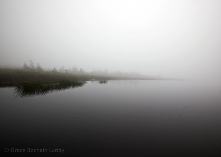 Foggy Morning, Port Maitland, Nova Scotia, August 2013.  When I went back to this picture, I remembered that morning all over again.  I like to look at my pictures many times.  I need to.  I don't necessarily get things right away.    I like to know a place the way I know a person...  in a relationship…  over a period of time.