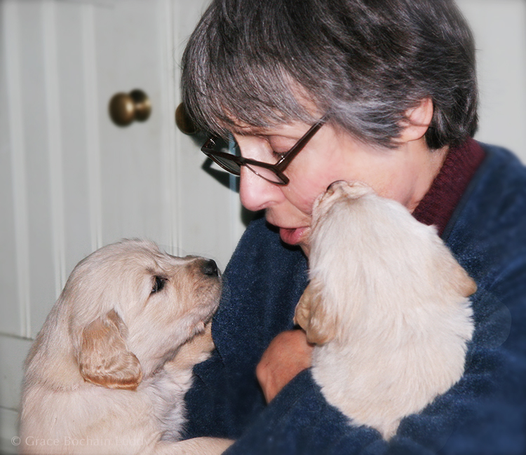 Diane with puppies.