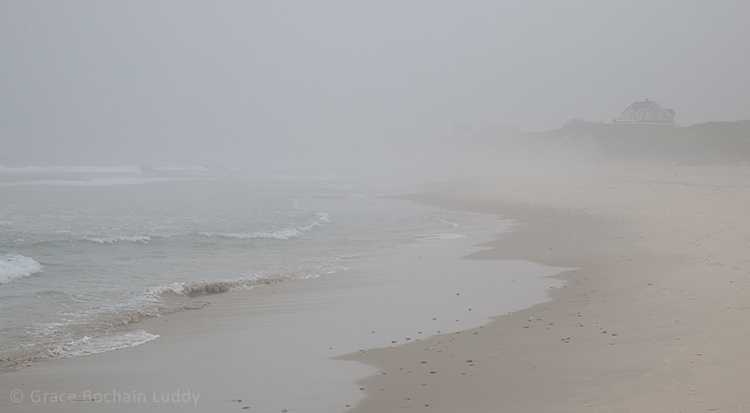 This is Mansion Beach, looking south into the fog.