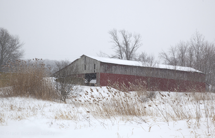 This is one of Stan's barns, taken from the fields behind.