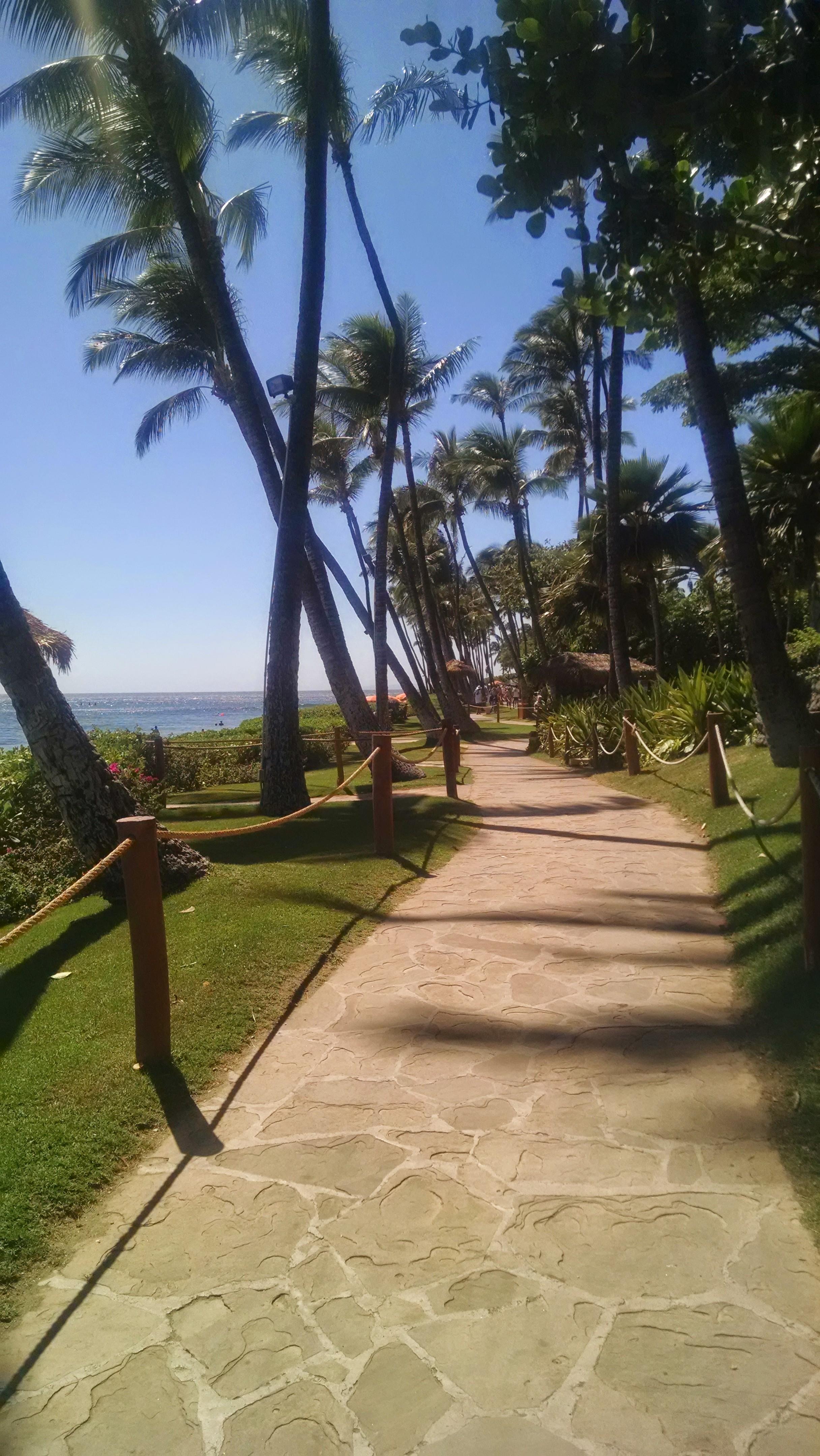 Kaanapali Beach Walkway - Maui, Hawaii