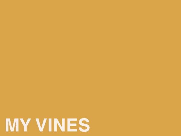 Website Links - Vines.png