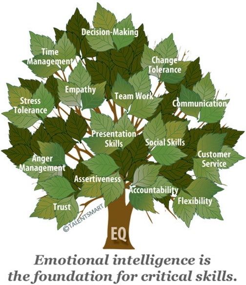 What is the Fruit of Emotional Intelligence? — TIM LANE