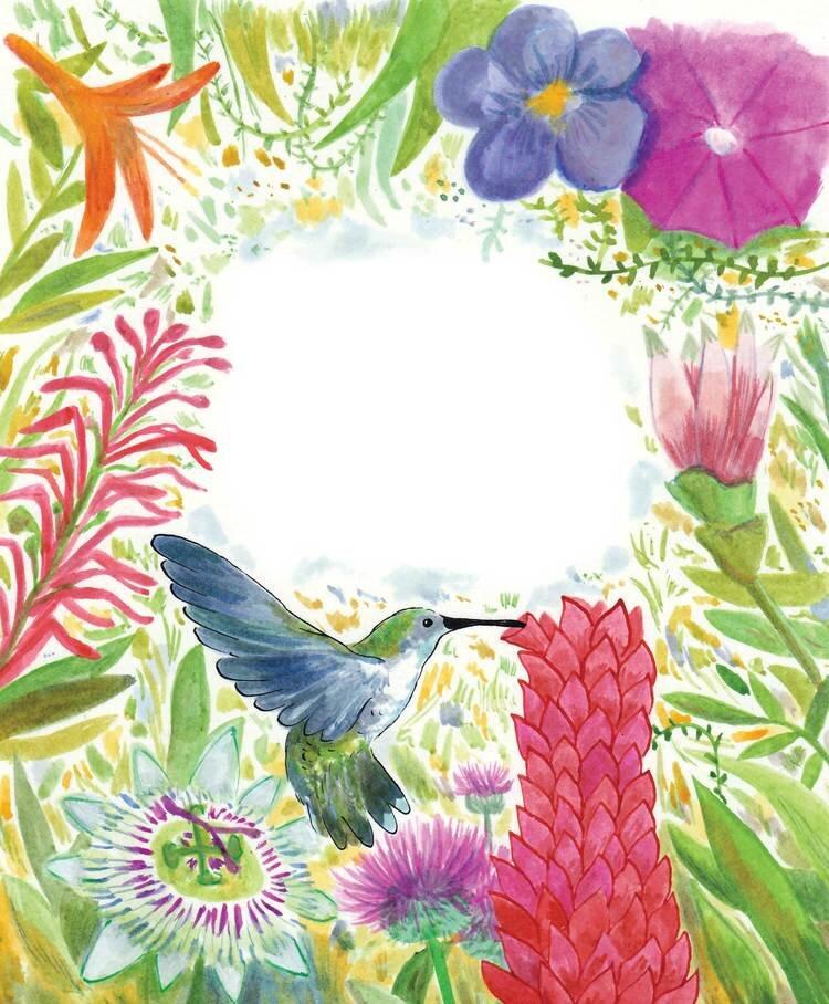 Hummingbird-+-Bleed.jpg