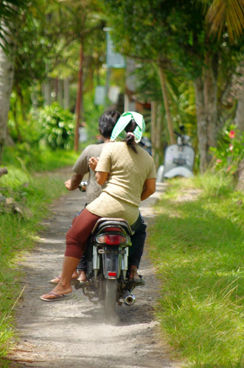 Koos. Bali