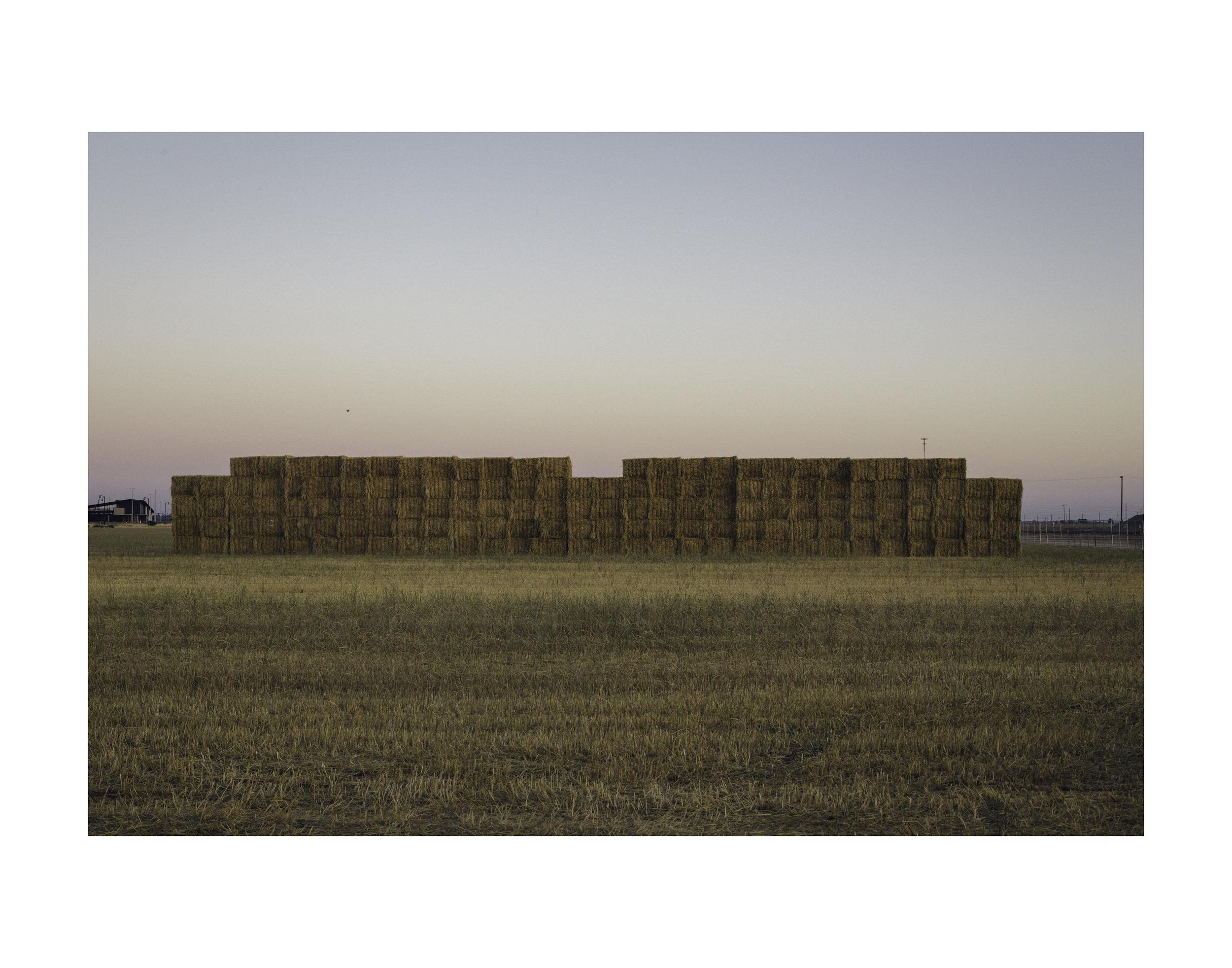 Agrarian Blocks, Elk Grove; 2017