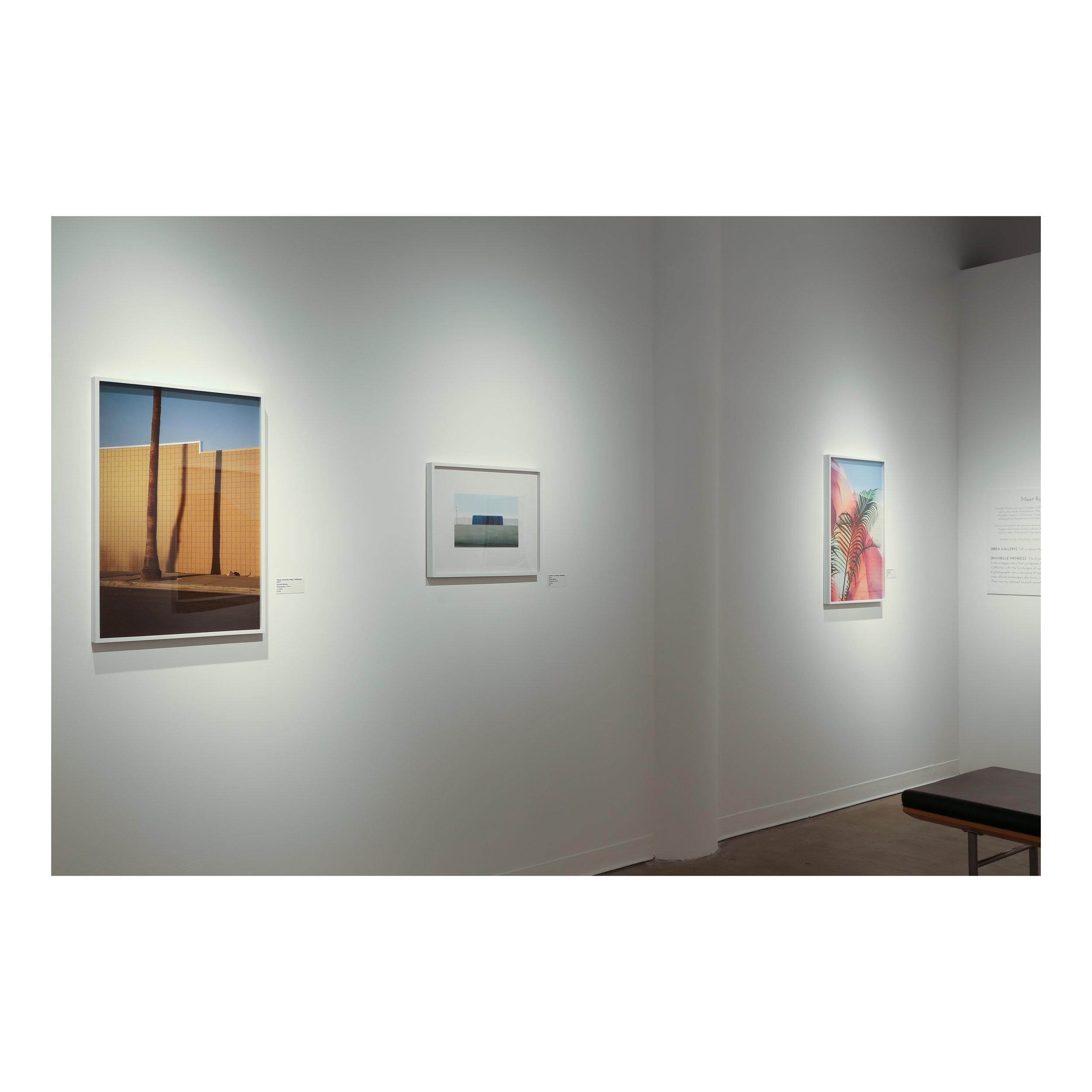Rachelle Mendez gallery photographer.jpg