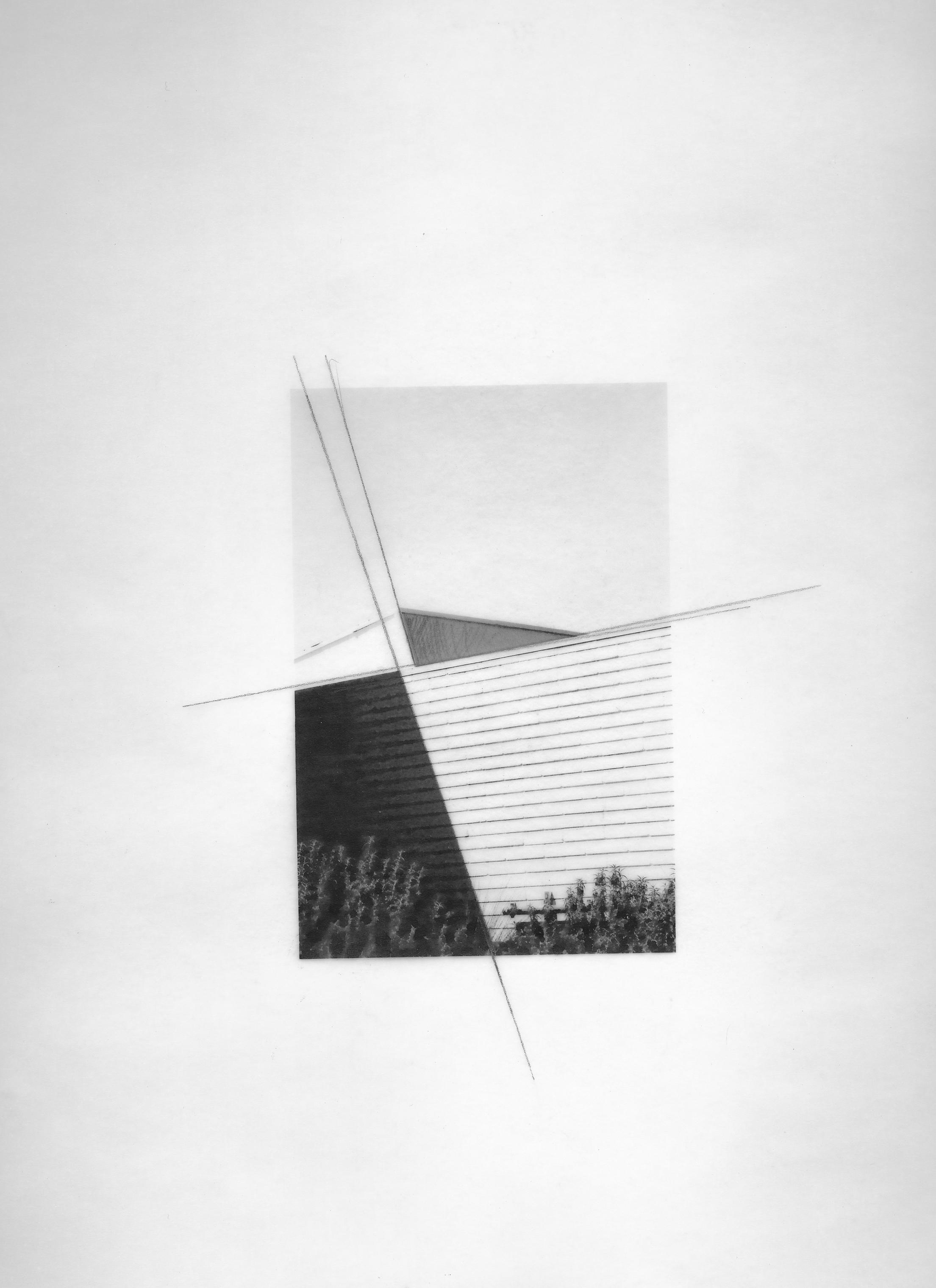 "La Mirada Lines; 2017   Ink and Pencil on Vellum, 12"" x 9"""