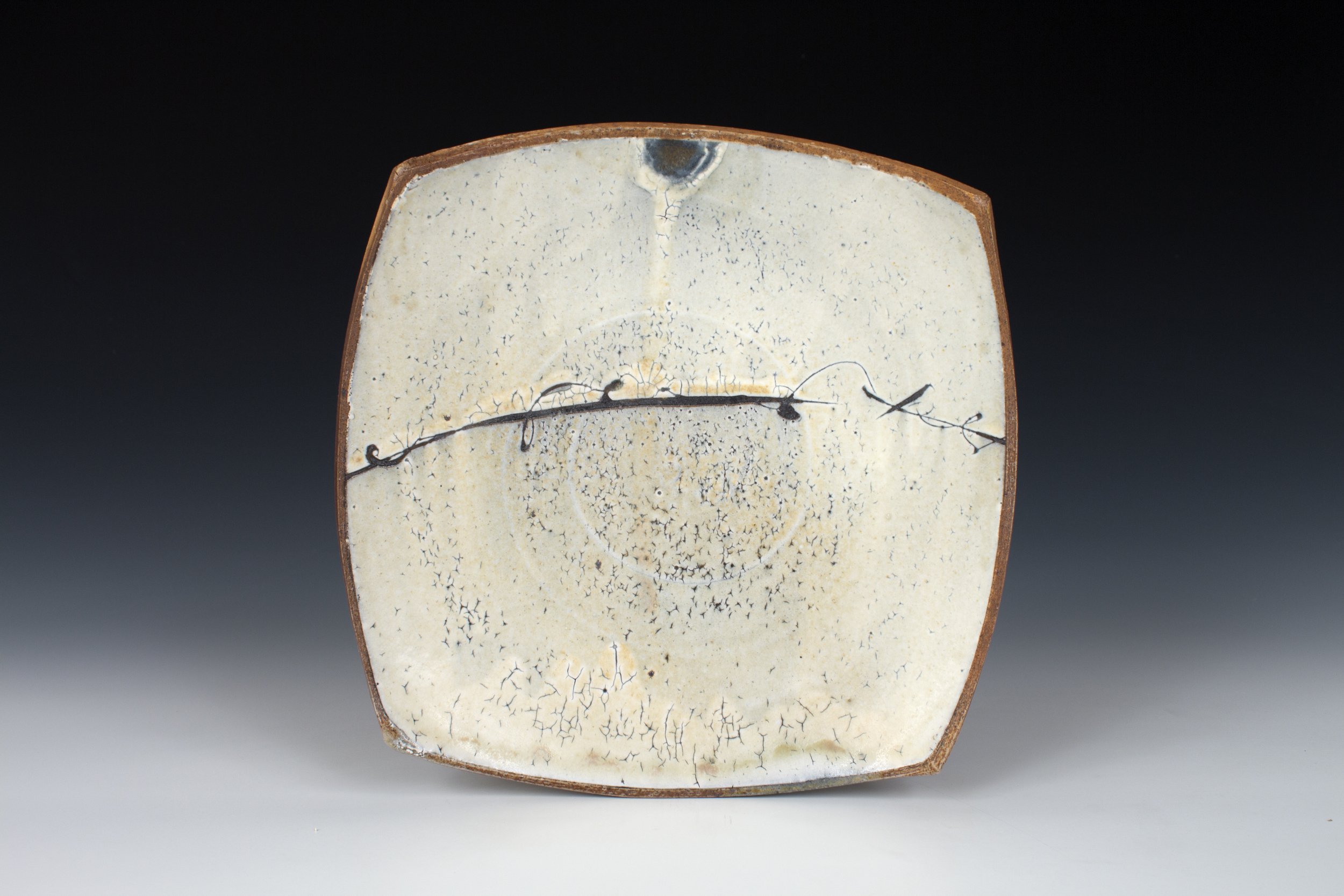 Barbed Wire Sandwich Plate