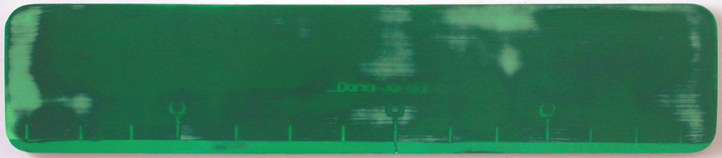 "Dania Jai-Alai 1 / acrylic on baltic birch / 8.5"" x 30.5"" / 2004"
