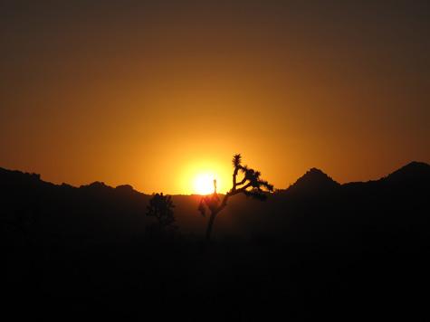 Desert7.jpg