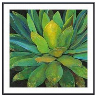 Printfinders  'Agave' by Jillian Design Framed Photographic Print    $409