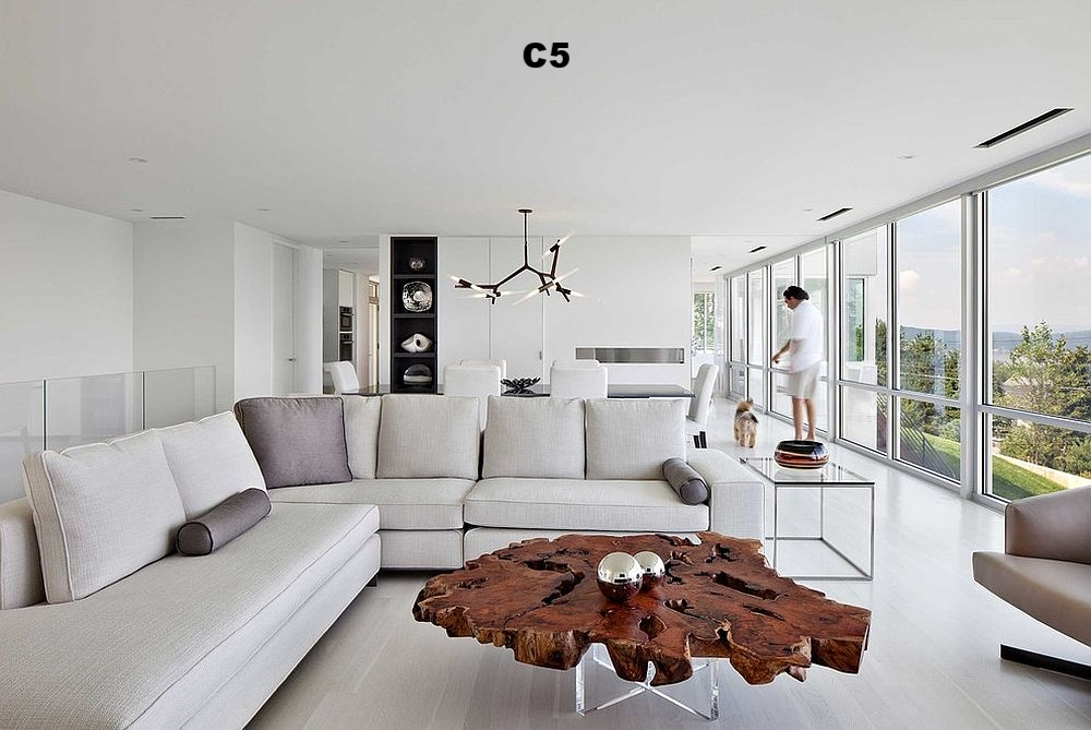 Contemporary-living-room-in-white-live-edge-coffee-table (1).jpg