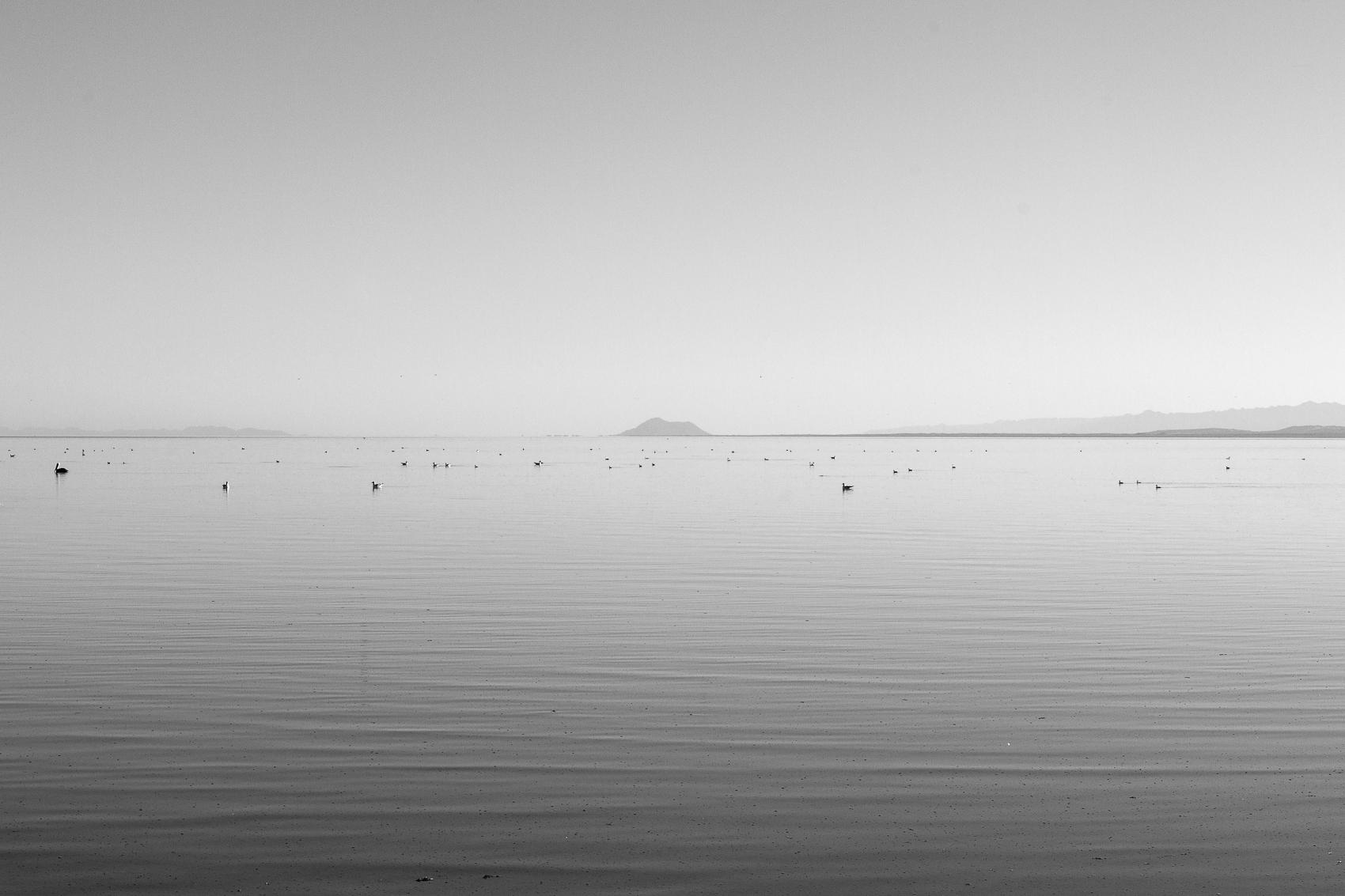 East Shore, Salton Sea, 2015