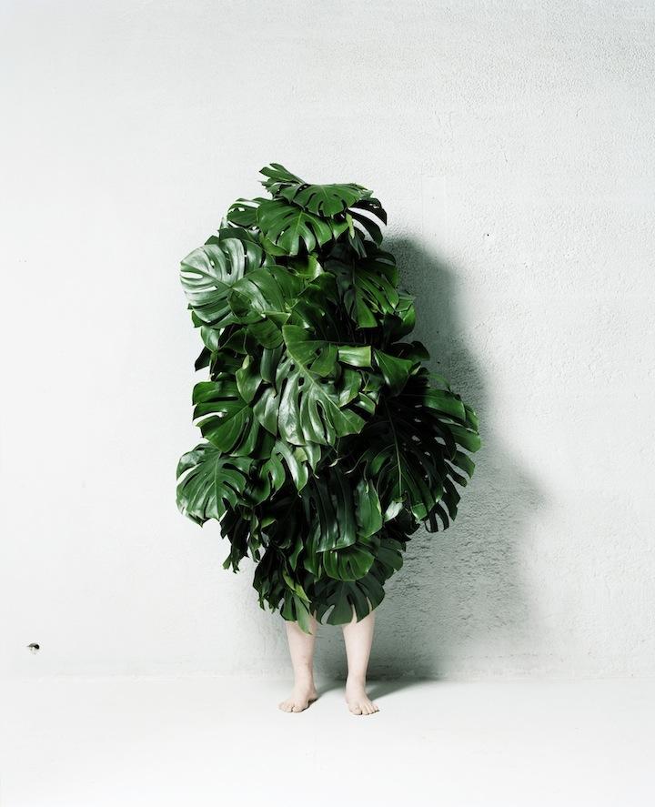 leafman001.jpg