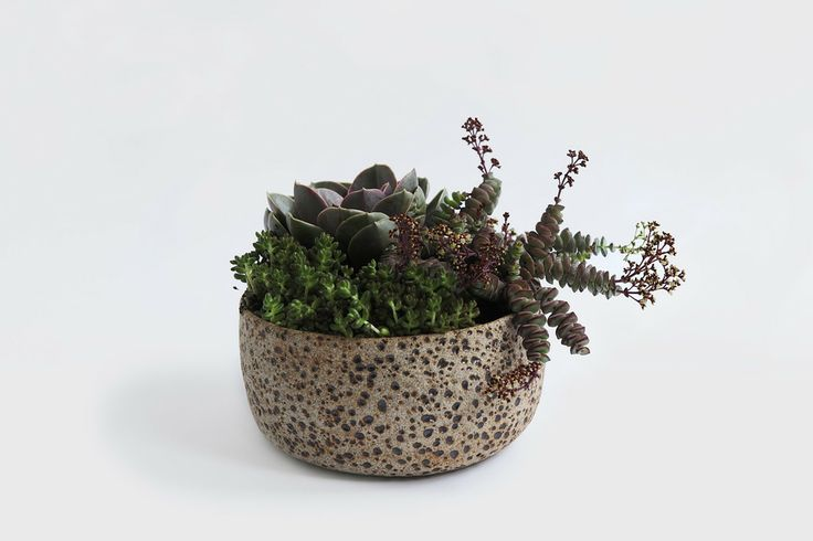 ABOVE: Large Meteor Planter in Natural by ceramicist Pilar Wiley  FOUND HERE