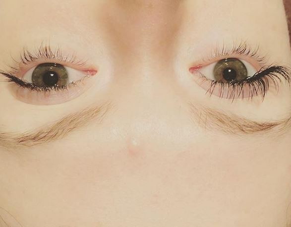 Green Tree Lashes.JPG