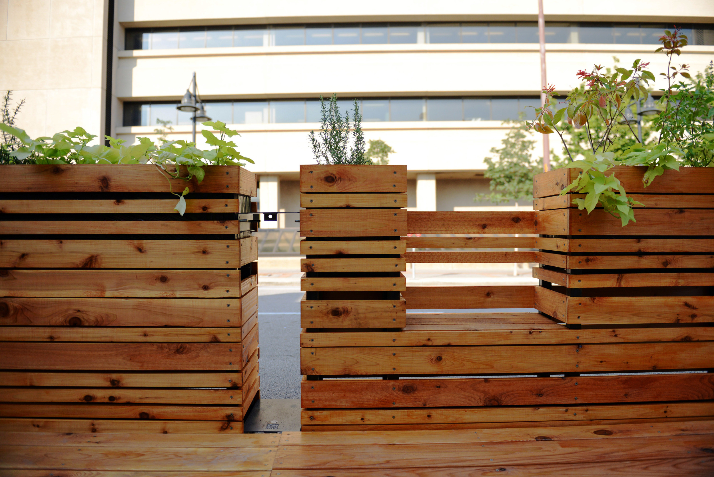 Using natural wood and plants, the parklet softens the city's hardscape.