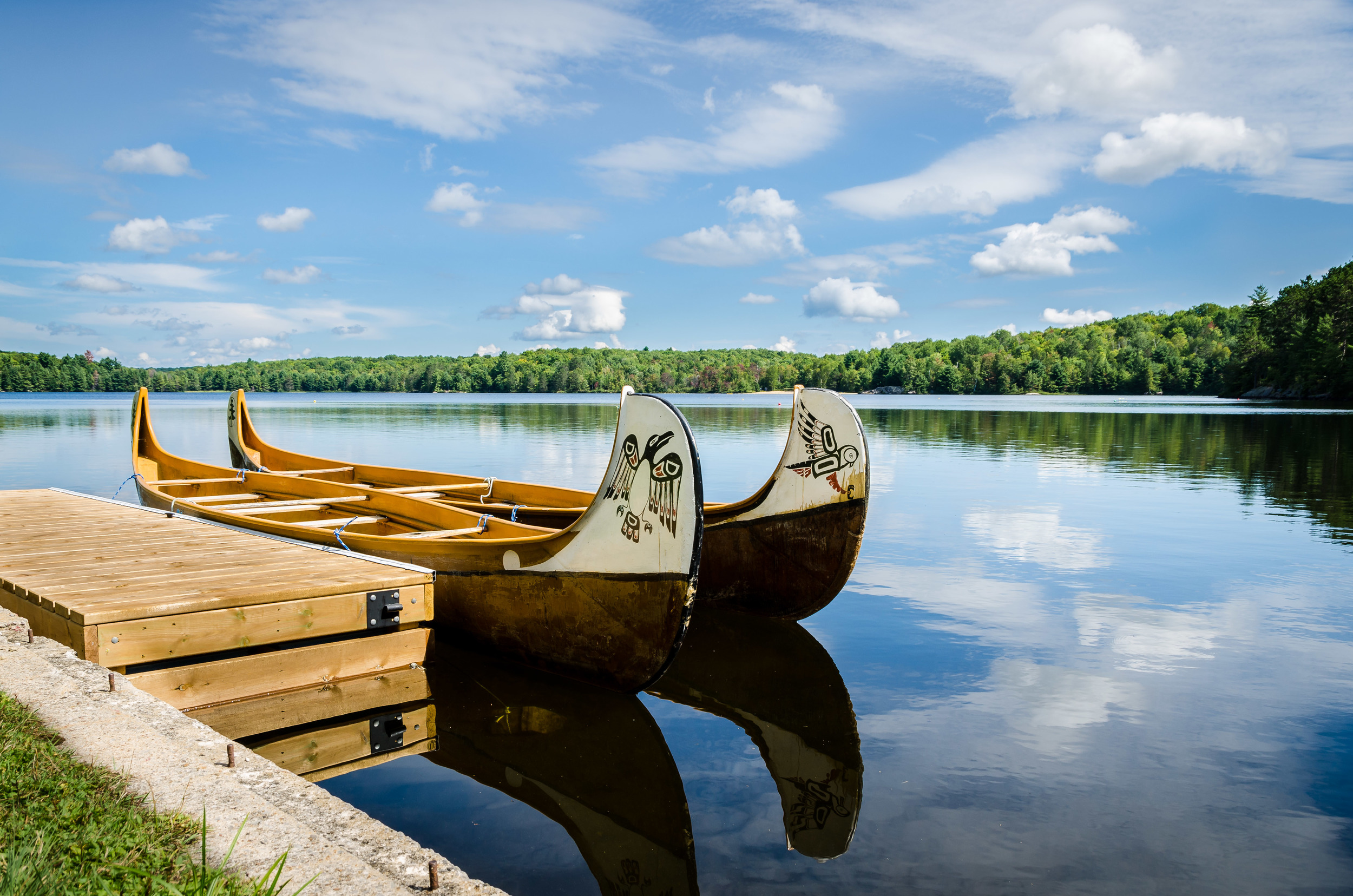Bark Lake Canoes.jpg