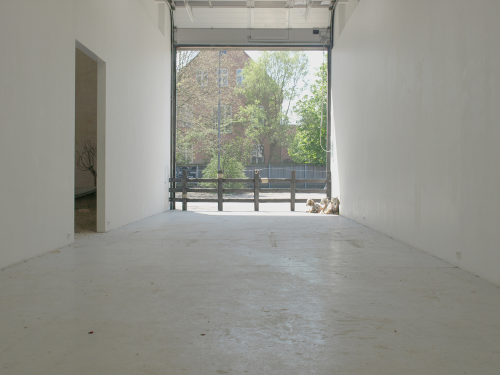 Installation view from Mathias & Mathias, 'Ricotta' at BKS Garage, 2013