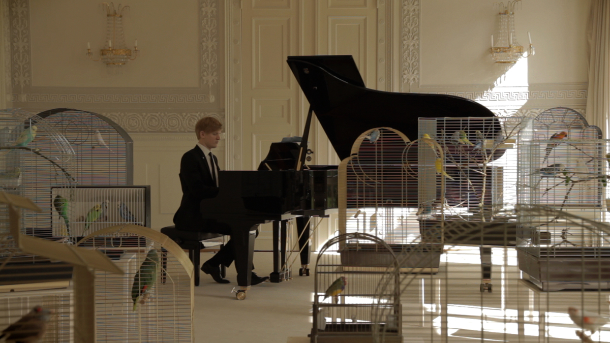 Still from:   Annika Kahrs, Playing to the birds, 2013    HDV-Video, colour, sound, 14 min, edition of 5 + 2AP