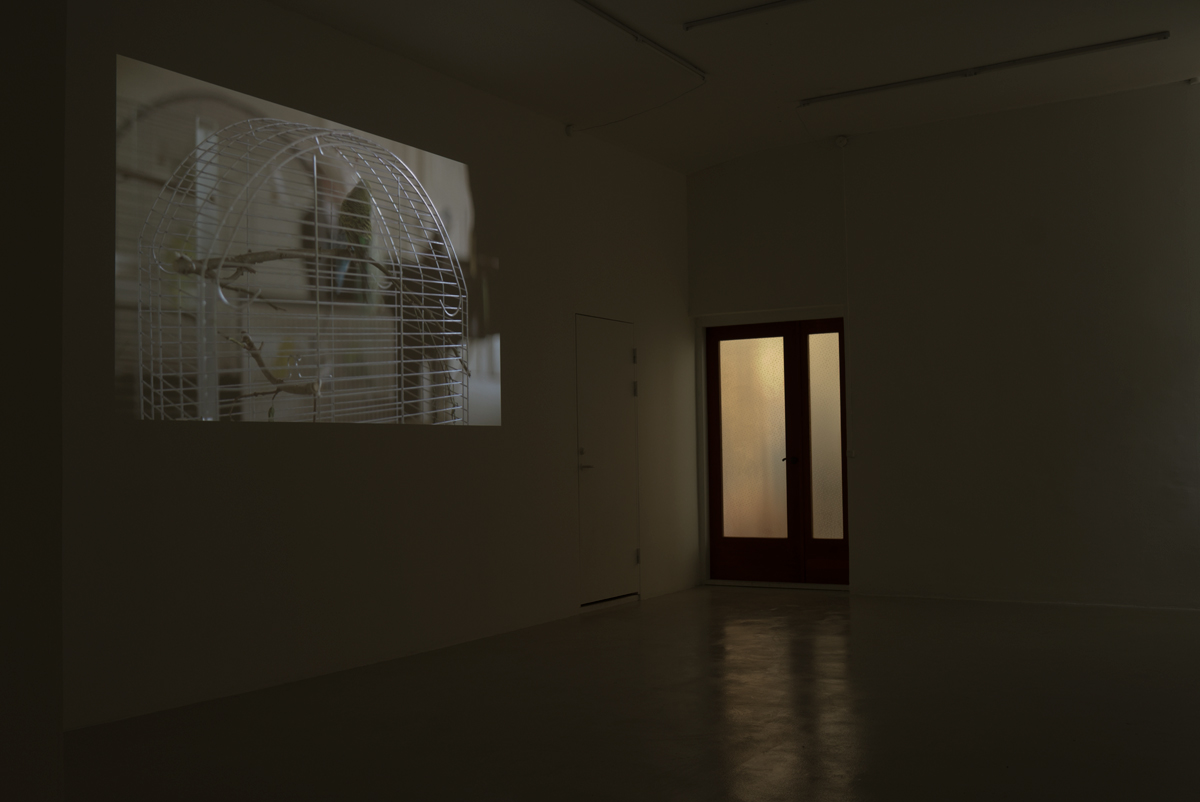 Installation view from the exhibition at Peter Amby Gallery