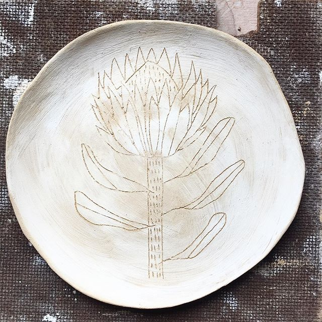 The return of proteas. Meanwhile, I am exploring options for a small-scale online shop. Any ideas?  #australianceramics #australianpottery #begavalley #bega #tathra #southcoastnsw #handmade #slabbuilt