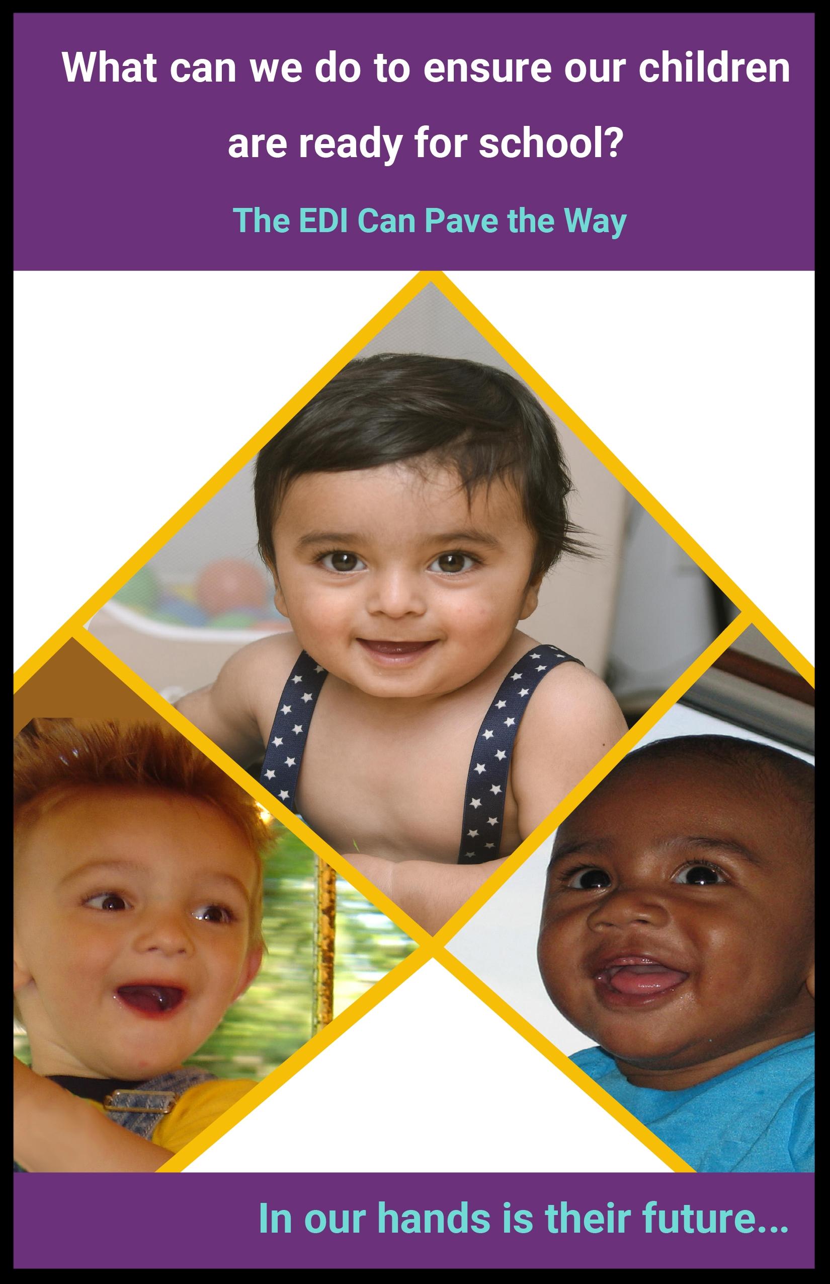 EDI Booklet Cover.jpg